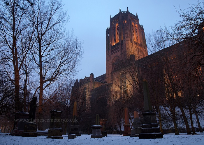 Gardens and Liverpool Cathedral, 2013 - gardens-and-cathedral-2013.jpg